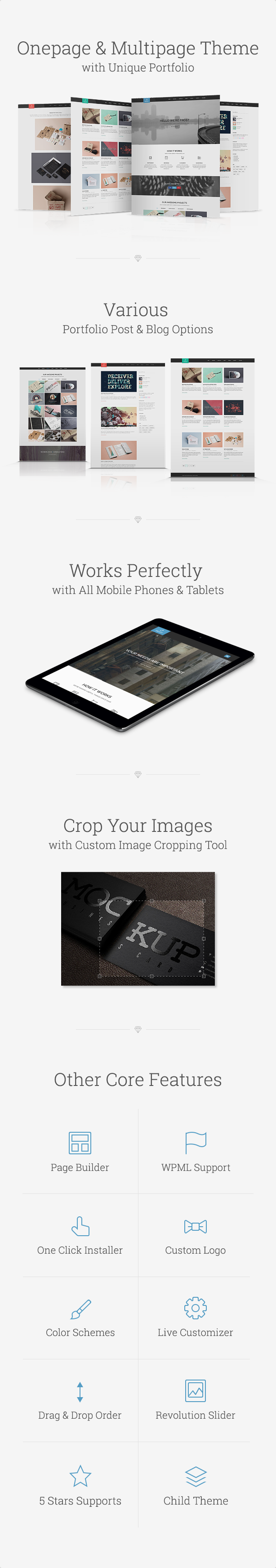 Frost WordPress theme main features